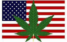 Legalization of cannabis australia essay - Barreau de Senlis